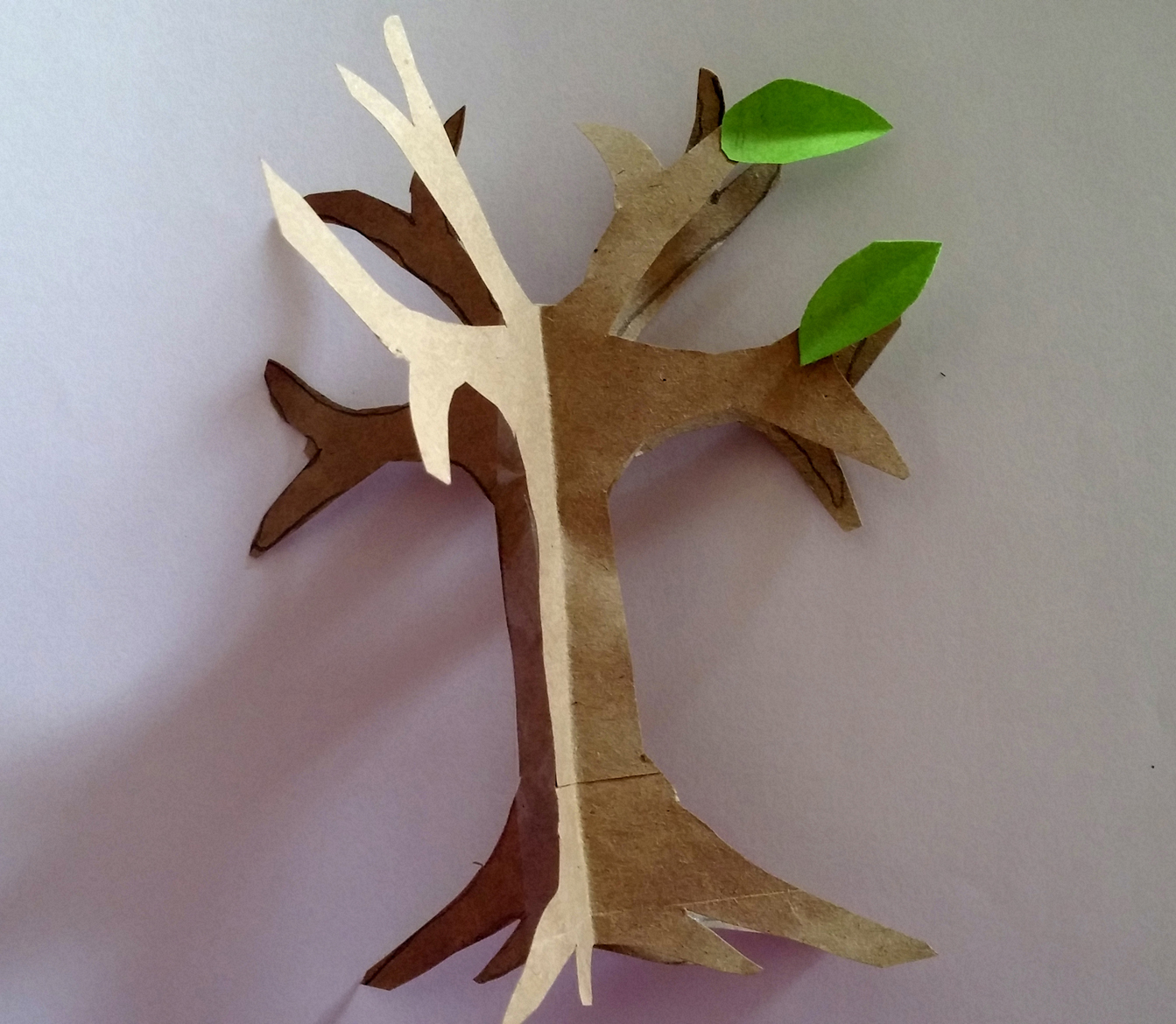 tree paper Product description hort wrap tree wrap is a biodegradable and stretchable paper wrap that.