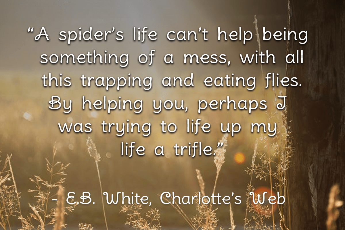 charlottes web quote _ 10 Life lessons I've learned from Children's Books