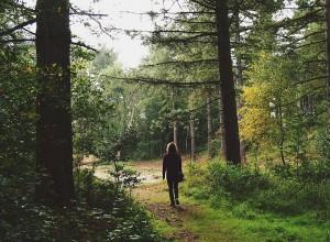 Outdoor kids summer activities - Nature walk-Imagine-Forest