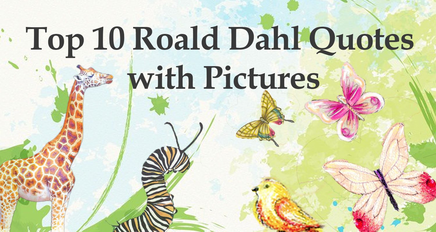 Wizard of oz quotes -  Top 10 Roald Dahl Quotes Imagine Forest