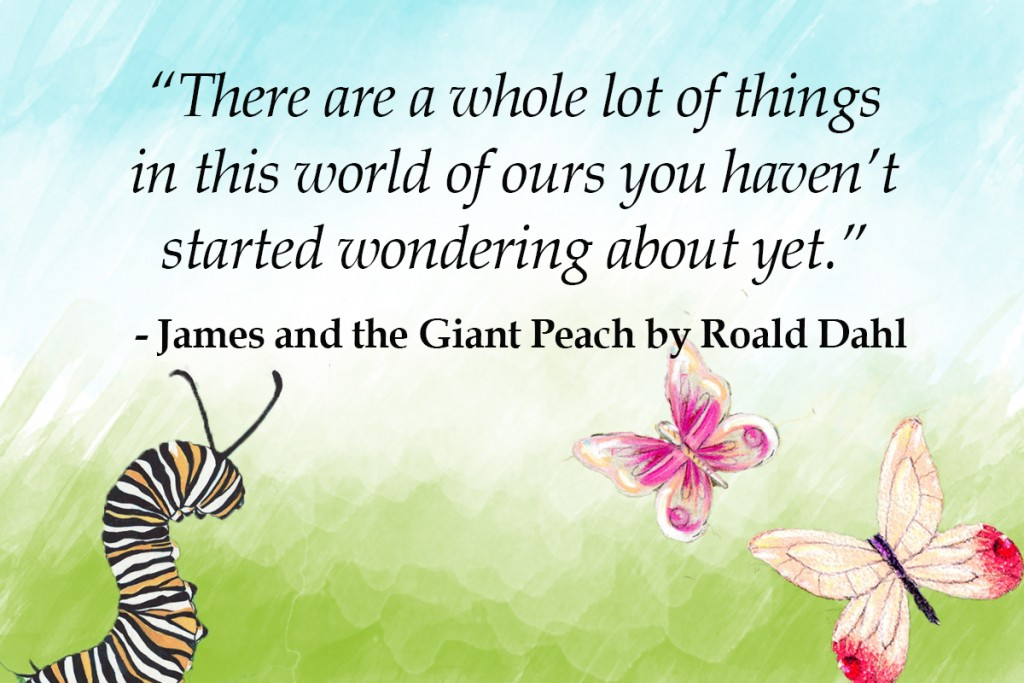 james and the giant peach - top 10 roald dahl quotes Imagine Forest