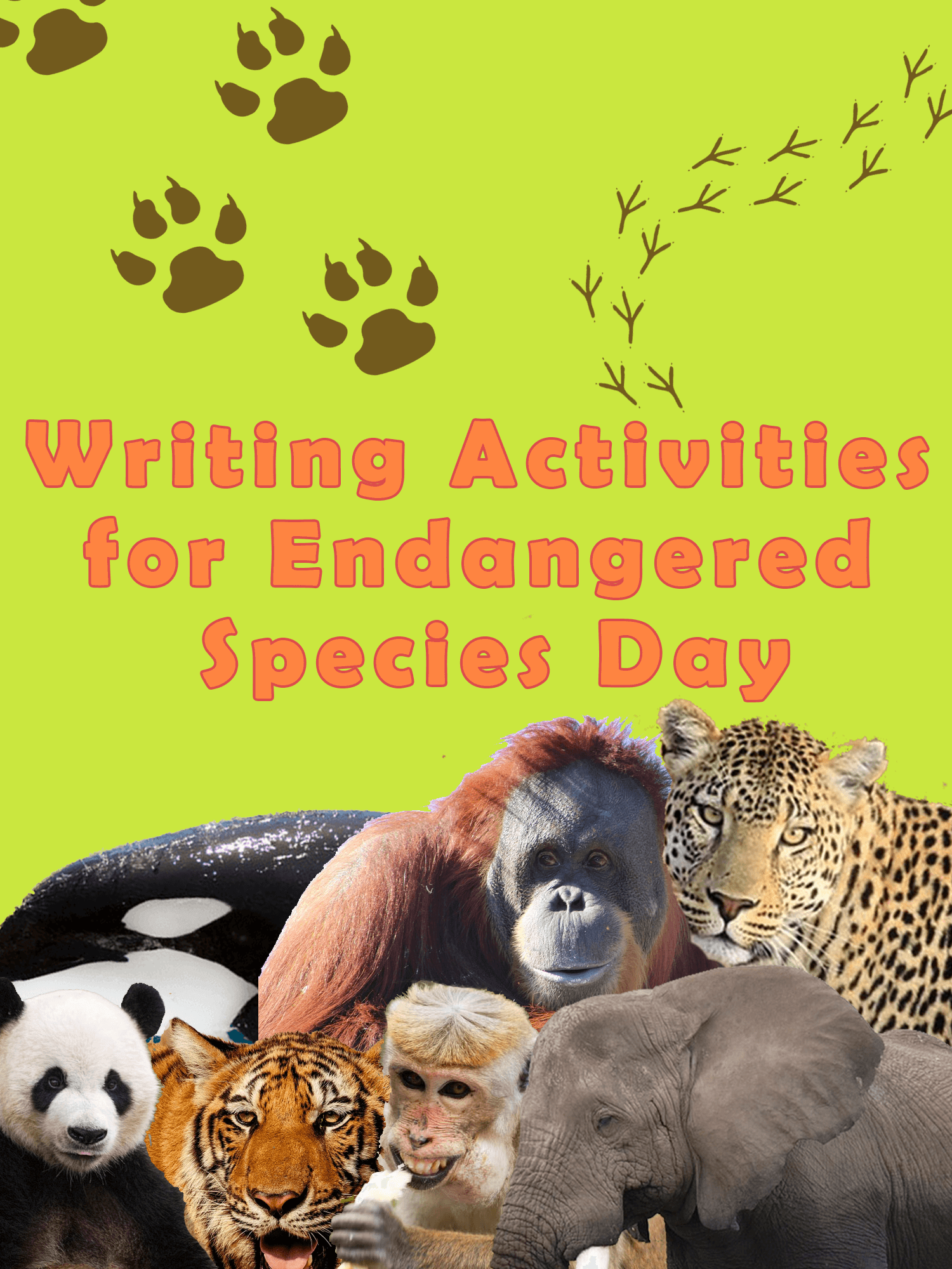 Free Printable Adding And Subtracting Fractions Worksheets  Writing Activities For Endangered Species Day  Imagine Forest Printable 7th Grade Reading Comprehension Worksheets Word with Advanced Esl Worksheets Writing Activities For Endangered Species Dayimagine Forest Free Print Worksheets Excel