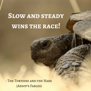 Life Lessons From Aesop's Fables_ the tortoise and the hare quotes