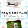 short stories for kids_baileys best buddy a short story for kids