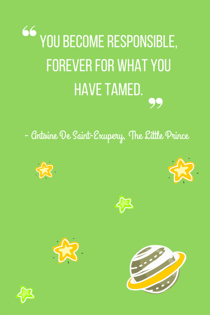 Inspiring quotes from The Little Prince_10