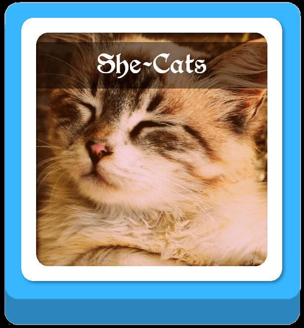 she cat warrior cat names