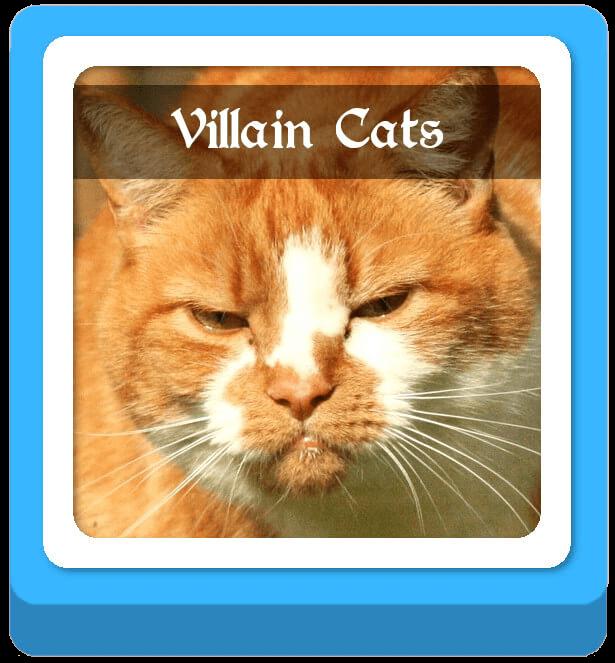 villain warrior cat names