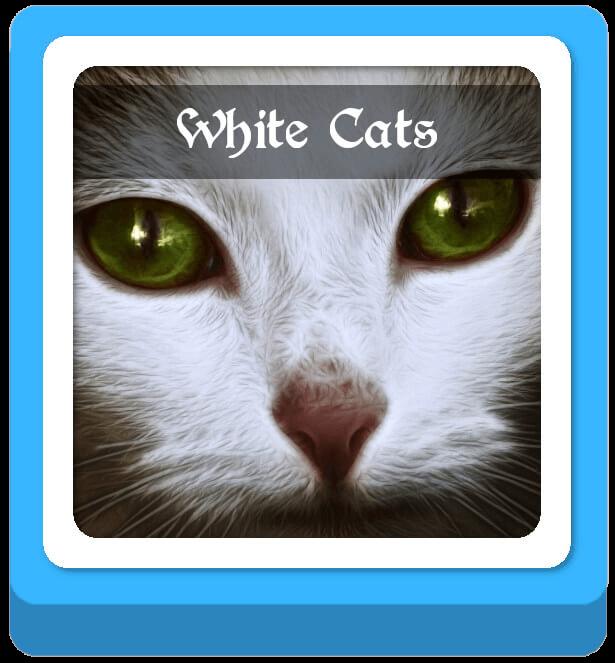 white cat warrior cat names